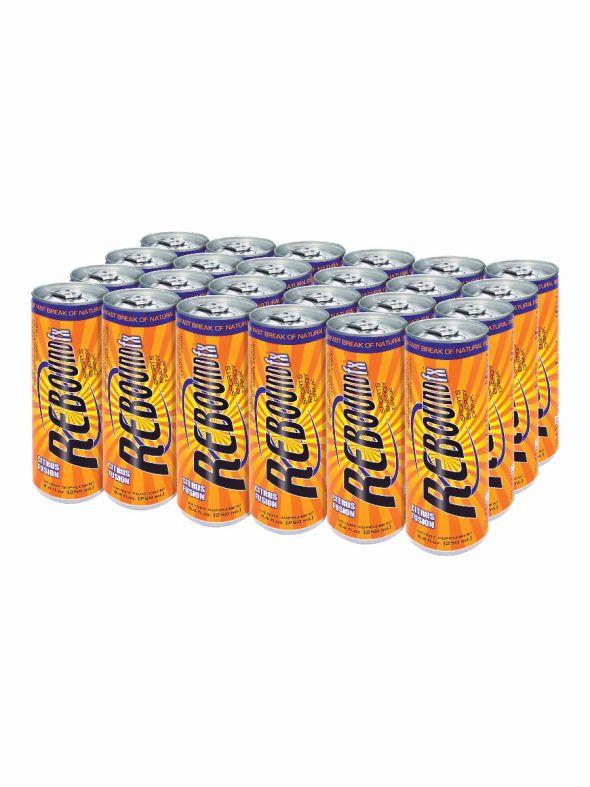 Rebound Fx Citrus Fusion Sports Energy Drink - 1 Case